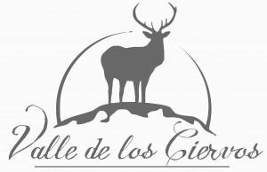 LOGO_VALLE_ALTA_CALIDAD